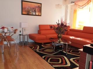 Executive Two Bedroom With All Amenities - New York City vacation rentals