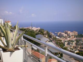 PENTHOUSE'S MONACO GARDEN - Cap d'Ail vacation rentals