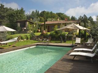 Villa Ginestra - Florence vacation rentals