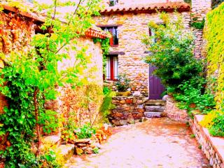 CASTELNOU, SOUTH OF FRANCE - Ille-sur-Tet vacation rentals