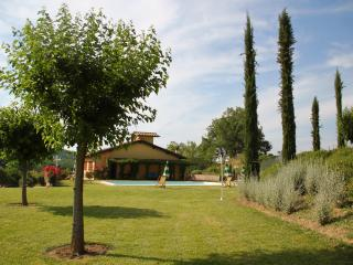 Holiday Farmhouse in San Giovanni Valdarno - San Giovanni Valdarno vacation rentals