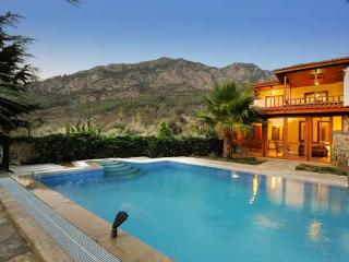 Perfect Villa with Internet Access and A/C - Orhaniye vacation rentals