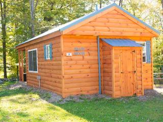 Blue Moon - One Room Cabin - Boonville vacation rentals