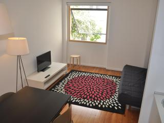 2 bedroom Apartment with A/C in Porto - Porto vacation rentals