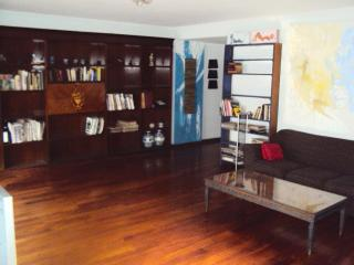 Phenomenal Entire Flat in BELGRANO up to 9 people - Buenos Aires vacation rentals