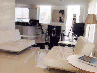 Amazing Modern Townhouse in Miami Beach - Miami Beach vacation rentals