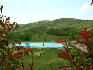 Romantic villa Chianti, Wi-Fi, cooking classes, weddings - Bucine vacation rentals