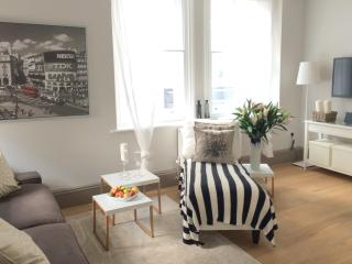 NEW! LUXURY! 2 Bed/2bath,  near OxfordCircus - London vacation rentals