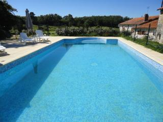 Pretty, 3x1 bed luxury gites, exclusively adult - Saint-Laurent-des-Combes vacation rentals