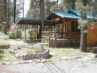 Upper Canyon Retreat - 2 Bed 1 Bath Hot Tub Cabin - Ruidoso vacation rentals