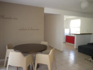 Nice Condo with Internet Access and A/C - Roura vacation rentals