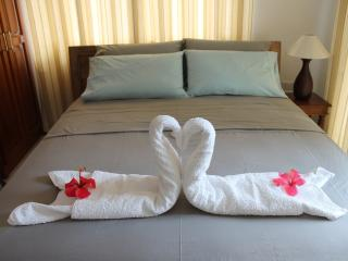 Central Self Cat. Apartment - Anse Royale vacation rentals