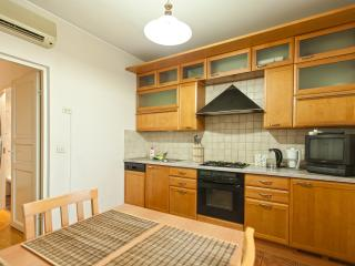 Miracle Apartment Plushikha St - Moscow vacation rentals