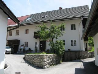 Lake Bohinj house 10-20 pers. - Bohinjsko Jezero vacation rentals
