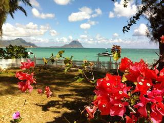 Beachfront Villa West Coast - Riviere Noire vacation rentals