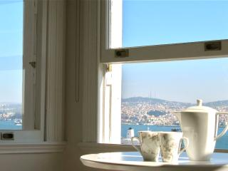 Fantastic views across the Bosphorus & Golden Horn - Istanbul vacation rentals