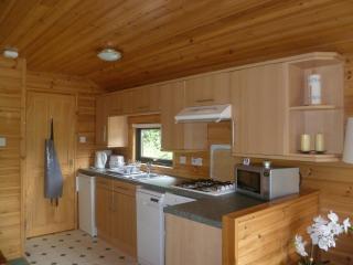 Lovely 1 bedroom Glendevon Lodge with Dishwasher - Glendevon vacation rentals