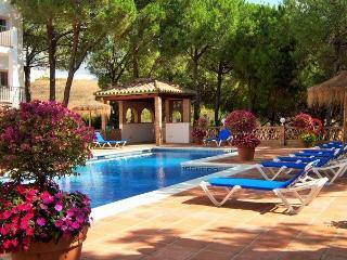 Sunny Condo with Internet Access and A/C - Nueva Andalucia vacation rentals