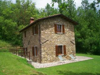 Gorgeous Villa in Pieve Fosciana with Short Breaks Allowed, sleeps 4 - Pieve Fosciana vacation rentals