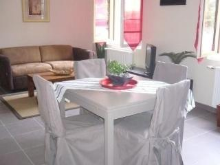 DISNEYLAND PARIS, QUIET APARTMENT 668 ft2 (62m2) - Chessy vacation rentals