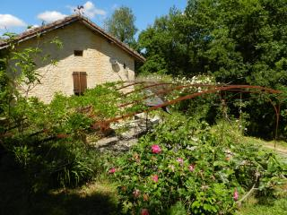 Beautiful gite near Cahors vineyards with pool - Prayssac vacation rentals