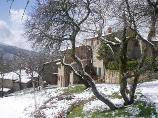 Romantic 1 bedroom Condo in Bibbiena - Bibbiena vacation rentals