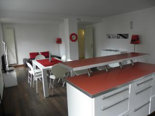 Appartement meuble centre vill - Strasbourg vacation rentals