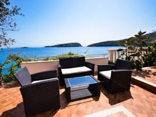 Beach villa near Dubrovnik with private  beach - Molunat vacation rentals