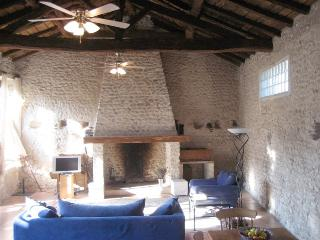 Perfect House with Internet Access and Dishwasher - Bouteilles-Saint-Sebastien vacation rentals