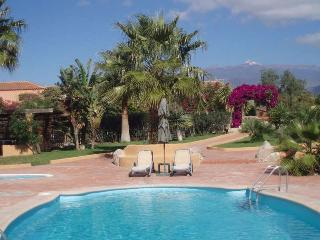 2 bedroom Finca with Garden in Las Galletas - Las Galletas vacation rentals