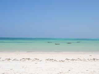 Zanzibar ideal Villa on the beach, Kitesurf spot. - Kiwengwa vacation rentals