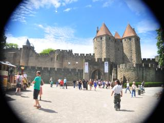 near canal du midi and castel - Carcassonne vacation rentals