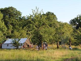 Safari Glamping - Earl of Uxbridge's Lodge - Stalbridge vacation rentals