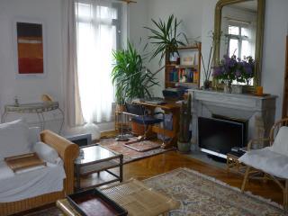 Comme à la maison au Puy-en-Velay - Le Puy-en Velay vacation rentals
