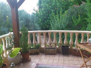 Maison Vacances Quinta dos Cédros - Loule vacation rentals