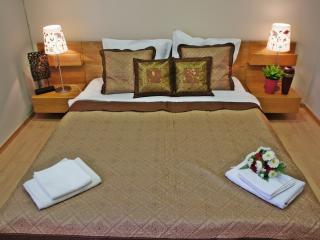 City center one bedroom apart. - Bucharest vacation rentals