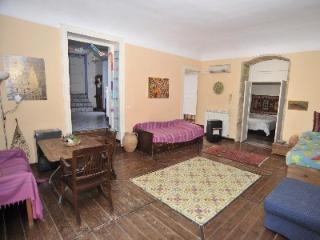 central appartment  with private garden  terrace  wifi - Palermo vacation rentals
