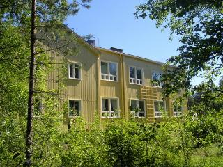 HALOSENRANTA UNIQUE space of 250 m2 - Kemijarvi vacation rentals