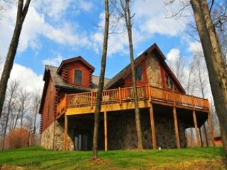 Perfect 5 bedroom House in McHenry - McHenry vacation rentals