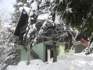 Nice House with Long Term Rentals Allowed and Television - Vrbovsko vacation rentals