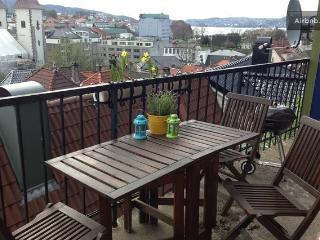 City view Bergen, spacious terrace - Bergen vacation rentals