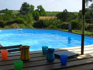 Nice House with Internet Access and Dishwasher - Naujan-et-Postiac vacation rentals