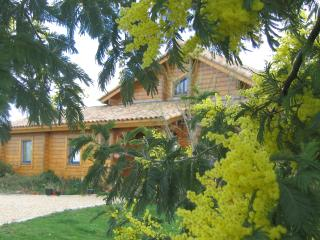 Nice House with Internet Access and Central Heating - Naujan-et-Postiac vacation rentals