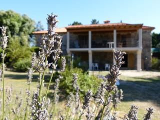 Charming stone house in rural setting - Pontevedra Province vacation rentals