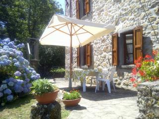 Lovely 3 bedroom Corfino Cottage with Internet Access - Corfino vacation rentals