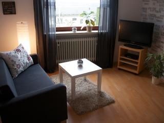 Romantic 1 bedroom Kassel Apartment with Internet Access - Kassel vacation rentals