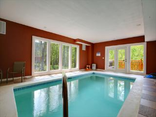Grand Bear Lodge - Cosby vacation rentals