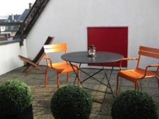 Appartement grande terrasse - Strasbourg vacation rentals