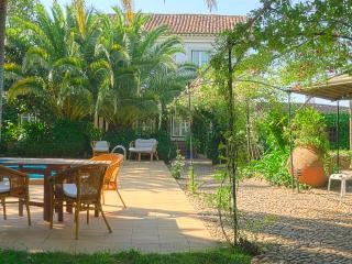 Nice House with Internet Access and Satellite Or Cable TV - Rio Maior vacation rentals