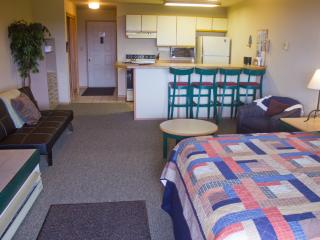 Studio Ski-in and Ski-out Condo on Big. Mountain - Whitefish vacation rentals